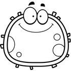 This is a happy cell, that is well nourished and strong....ready to function optimally.