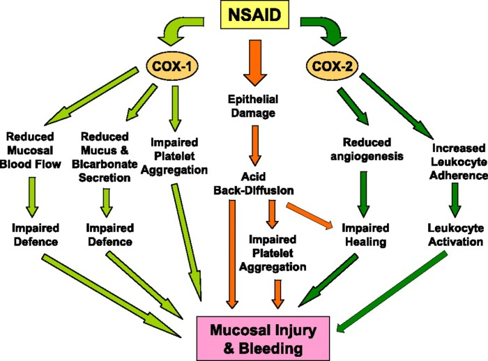 This image from http://physrev.physiology.org shows how medications that use COX-2 inhibitors block the inflammation pathway BUT also lead to a multitude of other issues